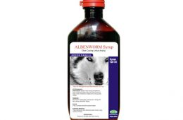 Albenworm Syrup For Dog